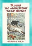 BUMPER THE WHITE RABBIT AND FRIENDS - 16 illustrated stories of Bumper and his Friends