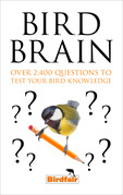 Bird Brain: Over 2,400 Questions to Test Your Bird Knowledge
