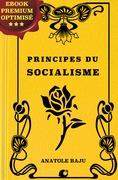 Principes du socialisme