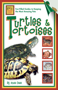 Turtles & Tortoises