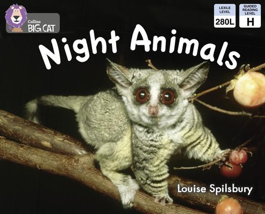 Night Animals: Yellow/ Band 3 (Collins Big Cat)