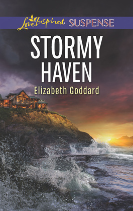 Stormy Haven (Mills & Boon Love Inspired Suspense) (Coldwater Bay Intrigue, Book 2)
