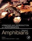 Hormones and Reproduction of Vertebrates - Vol 2: Amphibians