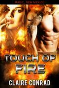 Touch of Fire: A Magic, New Mexico World Book