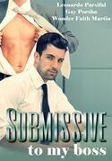 Gay young adult books: Submissive to my boss 5 (