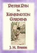 PETER PAN IN KENSINGTON GARDENS - Baby Peter's First Adventure