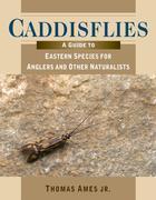 Caddisflies