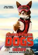 Superpower Dogs: Henry, Avalanche Rescue Dog