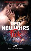 Der Neujahrsfick | Erotische Geschichte