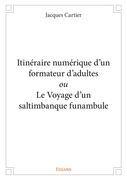 Itinéraire numérique d'un formateur d'adultes ou Le Voyage d'un saltimbanque funambule