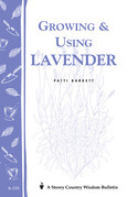 Growing & Using Lavender
