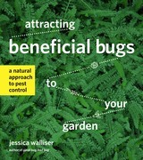 Attracting Beneficial Bugs to Your Garden