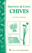 Growing & Using Chives