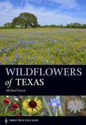 Wildflowers of Texas