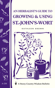 An Herbalist's Guide to Growing & Using St.-John's-Wort