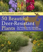 50 Beautiful Deer-Resistant Plants