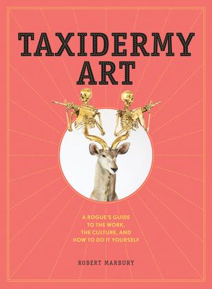 Taxidermy Art