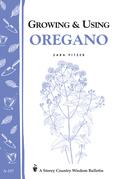 Growing & Using Oregano