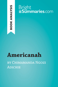 Americanah by Chimamanda Ngozi Adichie (Book Analysis)