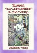 BUMPER THE WHITE RABBIT IN THE WOODS - Book 2 in the Bumper the White Rabbit Series