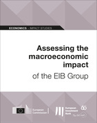 Assessing the macroeconomic impact of the EIB Group