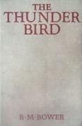 The Thunder Bird