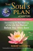 Your Soul's Plan eChapters - Chapter 3: Parenting Handicapped Children: Discovering the Real Meaning of the Life You Planned Before You Were Born