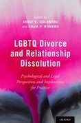 LGBTQ Divorce and Relationship Dissolution