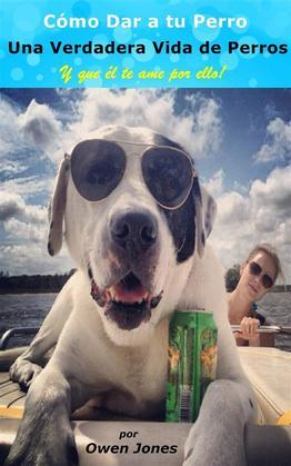 Cómo Dar A Tu Perro Una Verdadera Vida De Perros Y Que Él Te Ame Por Ello