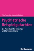 Psychiatrische Beispielgutachten