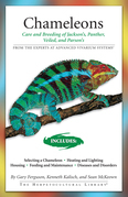 Chameleons: Care and Breeding of Jackson's, Panther, Veiled, and Parson's