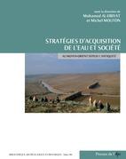 Stratégies d'acquisition de l'eau et société au Moyen-Orient depuis l'Antiquité