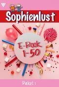 Sophienlust Paket 1 – Liebesroman