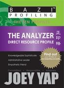 The Ten Profiles - The Analyzer (Direct Resource Profile)