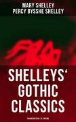 Shelleys' Gothic Classics: Frankenstein & St. Irvyne