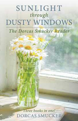 Sunlight Through Dusty Windows
