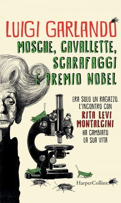 Mosche, cavallette, scarafaggi e premio Nobel