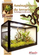 Aménagement du terrarium
