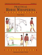 Practical Horse Whispering