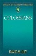 Abingdon New Testament Commentaries   Colossians