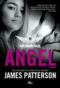 Maximum Ride: Angel