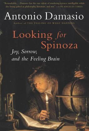 Looking for Spinoza: Joy, Sorrow, and the Feeling Brain