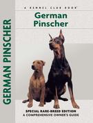 German Pinscher