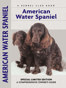 American Water Spaniel