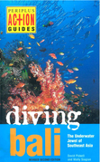 Diving Bali: The Underwater Jewel of Southeast Asia