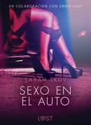 Sexo en el auto - Literatura erótica