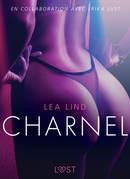 Charnel - Une nouvelle érotique