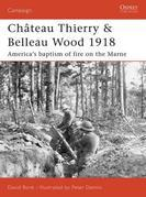 Château Thierry & Belleau Wood 1918: America's baptism of fire on the Marne