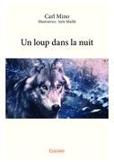 Un loup dans la nuit