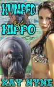 Humped By A Hippo